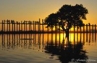 voyage Songes-aquatiques 29 U Bein bridge Tree reflecting on sunset_reccorr2.thumb.jpg